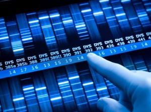 9_Months_genetic_testing_iStock_000017059021Small_pgiam-615x459